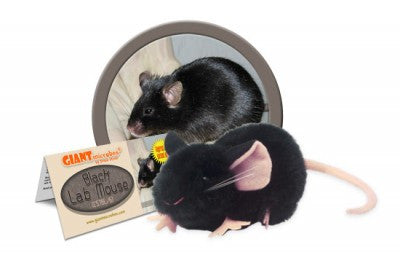 Black Lab Mouse - GIANTmicrobes® Plush Toy  - LabRatGifts
