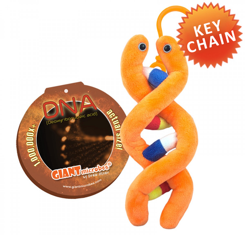 DNA - GIANTmicrobes® Key Chain