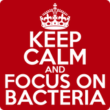 """Keep Calm and Focus On Bacteria"" (white) - Men's T-Shirt  - LabRatGifts - 12"