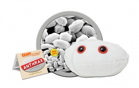 Anthrax (Bacillus anthracis) - GIANTmicrobes® Plush Toy  - LabRatGifts - 1