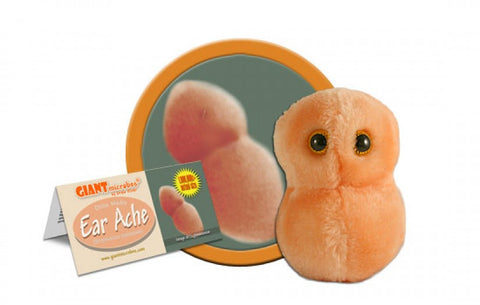 Ear Ache (Streptococcus pneumoniae) - GIANTmicrobes® Plush Toy  - LabRatGifts - 1