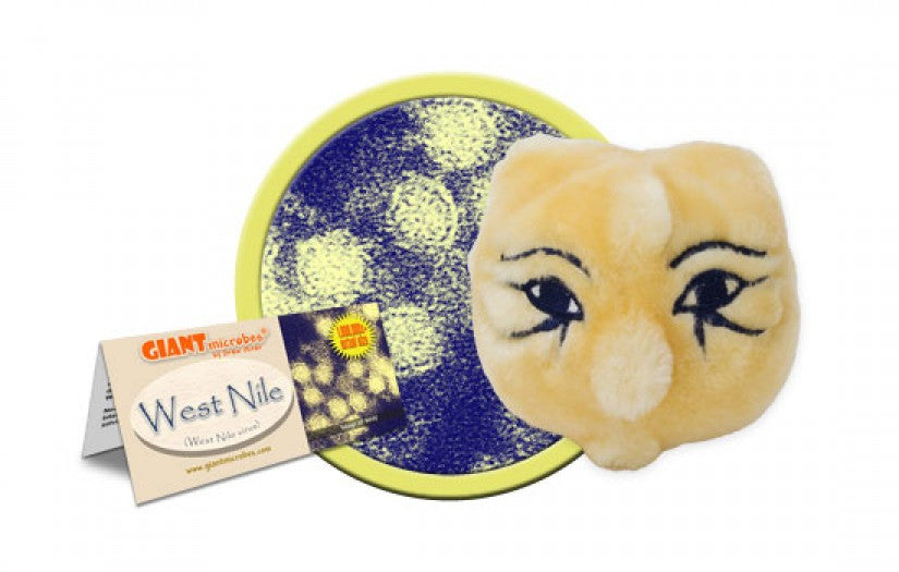 West Nile (West Nile Virus) - GIANTmicrobes® Plush Toy  - LabRatGifts - 1