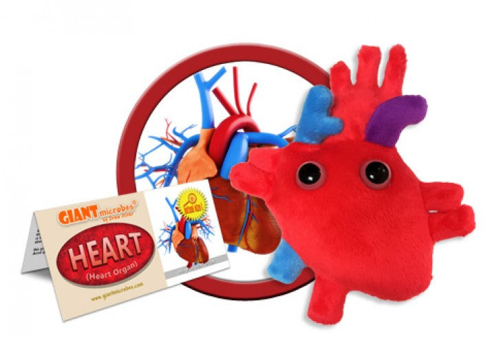 Heart (Heart Organ) - GIANTmicrobes® Plush Toy  - LabRatGifts - 1