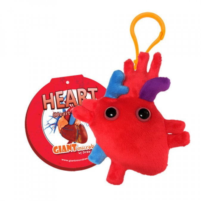 Heart (Heart Organ) - GIANTmicrobes® Keychain  - LabRatGifts