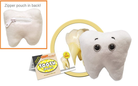 Tooth (Molar) Plush Toy with Zippered Pocket by Giantmicrobes