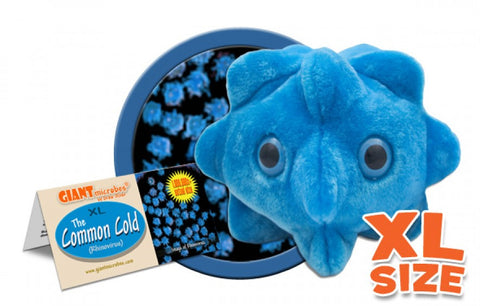 Common Cold (Rhinovirus) XL Size - GIANTmicrobes® Plush Toy  - LabRatGifts - 1