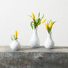 March Decor ~ Set of White Magnolia Bud Vases {pick up only}