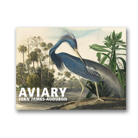 Aviary - John James Audubon Boxed Note Cards