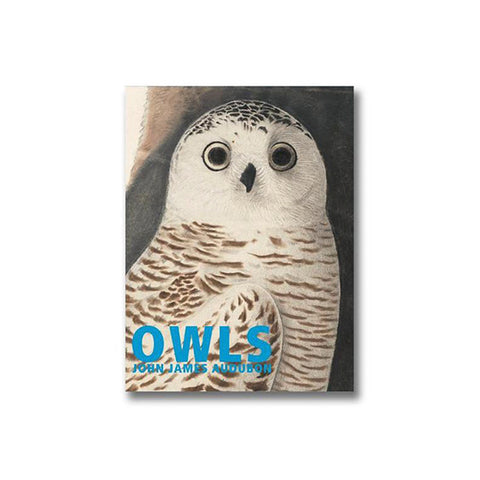 Owls - John James Audubon Boxed Note Cards
