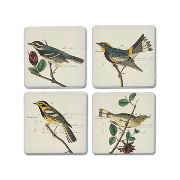 Audubon's Warblers Coaster Set - New-York Historical Society Museum Store