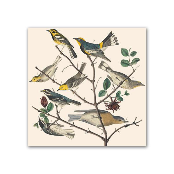 Warblers & Bluebirds Trivet