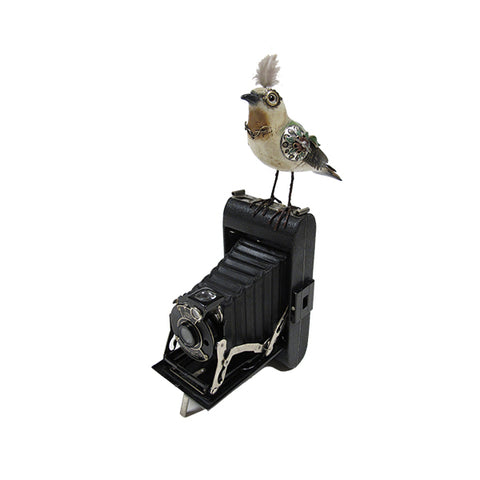 Bird on a Vintage Camera Figurine