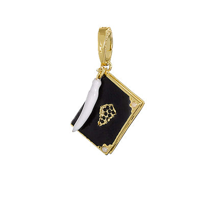 Lumos Tom Riddle's Diary Charm