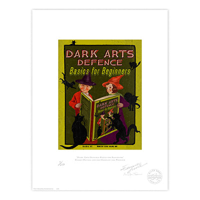Harry Potter - Darks Arts Defence Limited Edition Print
