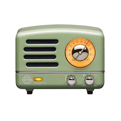 Mint Green Portable Wireless Radio and Bluetooth Speaker