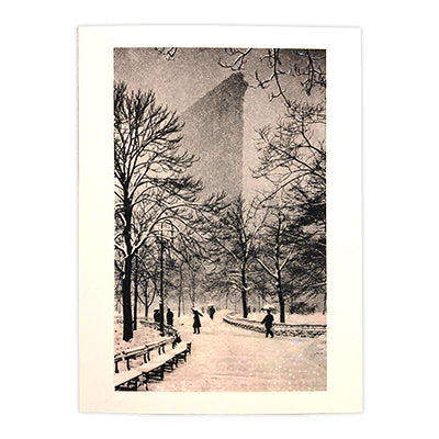 Flat Iron from Madison Square Park Box Cards
