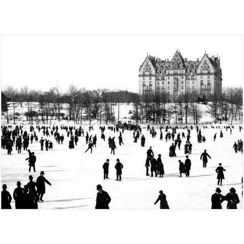 Skating Central Park boxed note cards