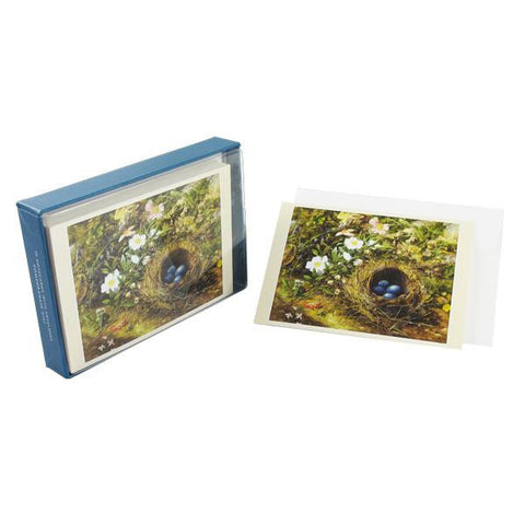 Bird's Nest and Dog Roses boxed note cards