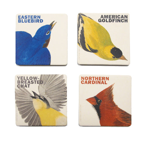 Audubon's Song Quartet Coaster Set