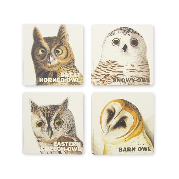 Audubon Owl Quartet Coaster Set - New-York Historical Society Museum Store