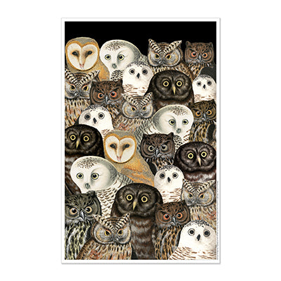Parliament of Owl Print