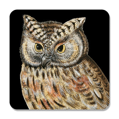 Scops Owl Coaster