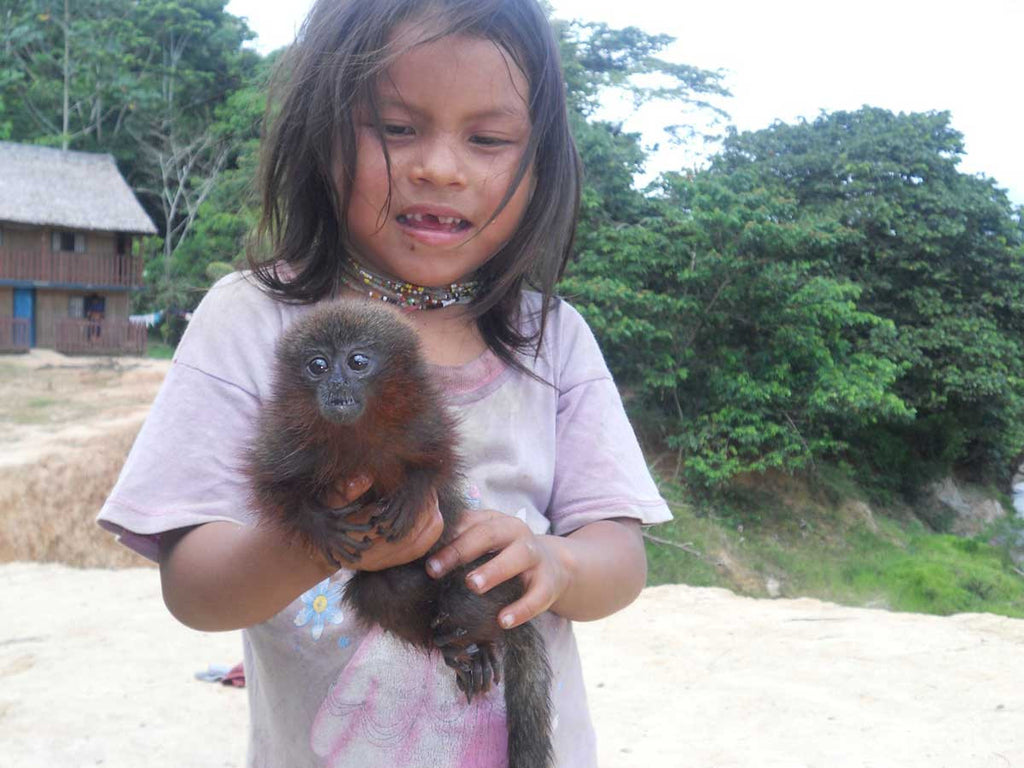 Matsés Girl with baby monkey