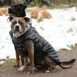 Alpine Extreme Weather Puffer Coat