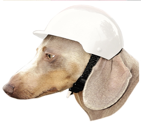 Dog Bike Helmet