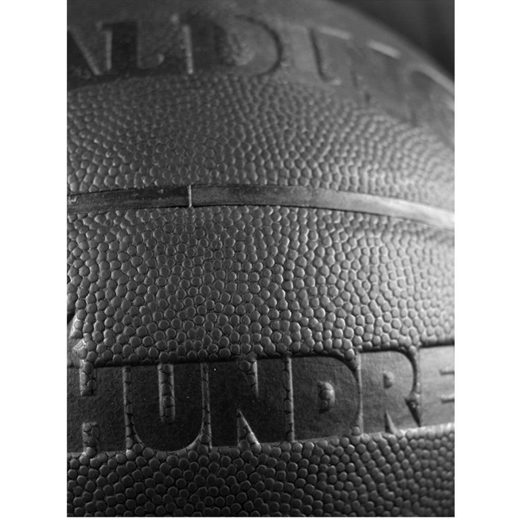 The Hundreds X Spalding Basketball