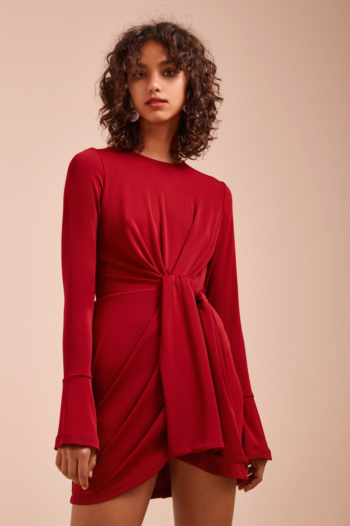 RECOLLECT LONG SLEEVE DRESS berry