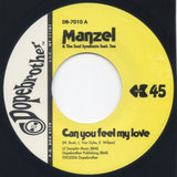 #12 (DB-7010) Manzel-Can You Feel My Love