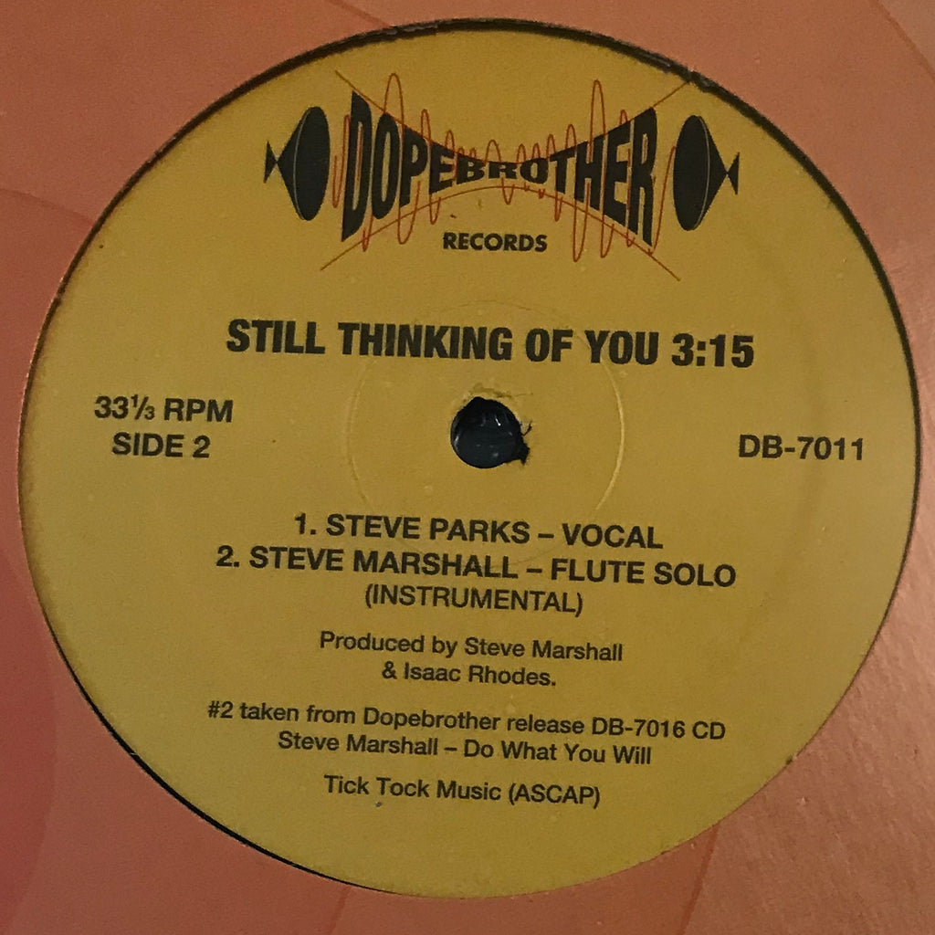 DB-7011 Steve Parks - Still Thinking Of You