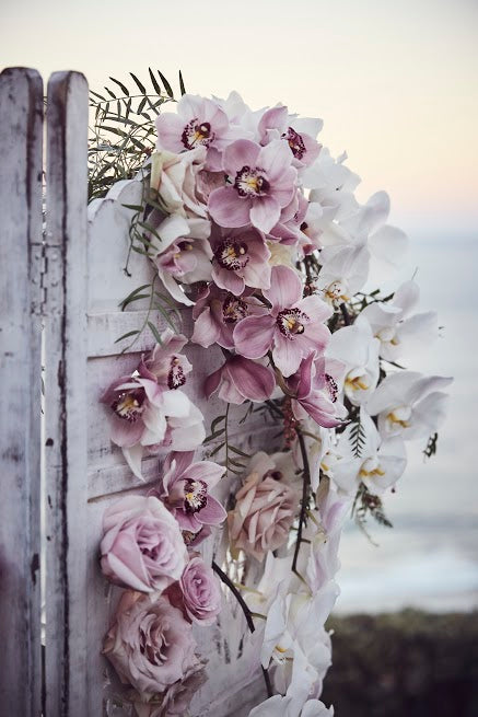 Cascading wall of orchids and roses on a white shutter