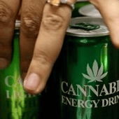 The First Ever Cannabis Drinks Expo