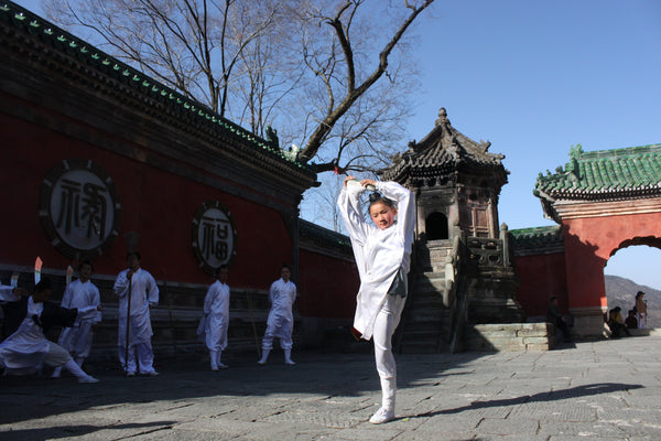 Wudang Qigong Internal Martial Arts