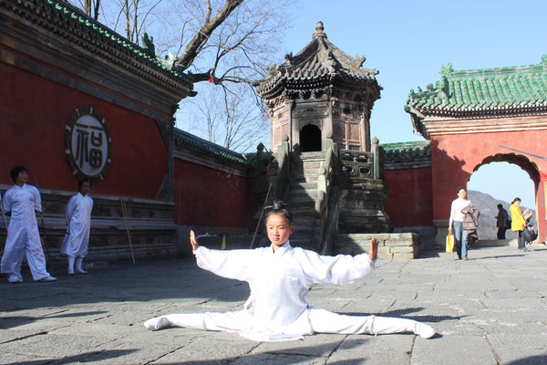 Wudang Internal Martial Arts Split