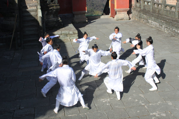 Wudang Internal Martial Arts Kungfu