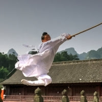 Wudang Spear