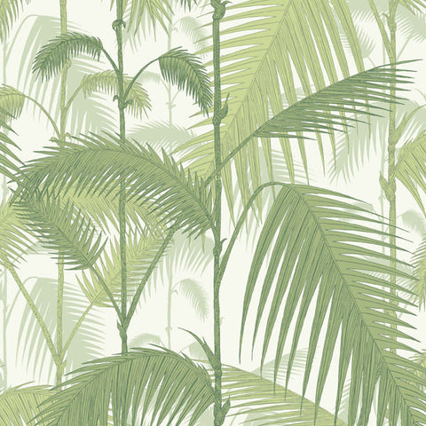 Palm Jungle in Green on White by Cole + Son