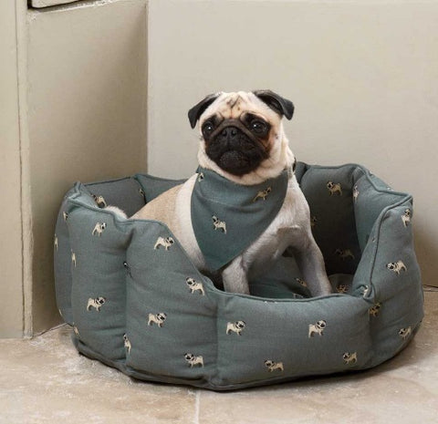 Dog Bed in Pug Print