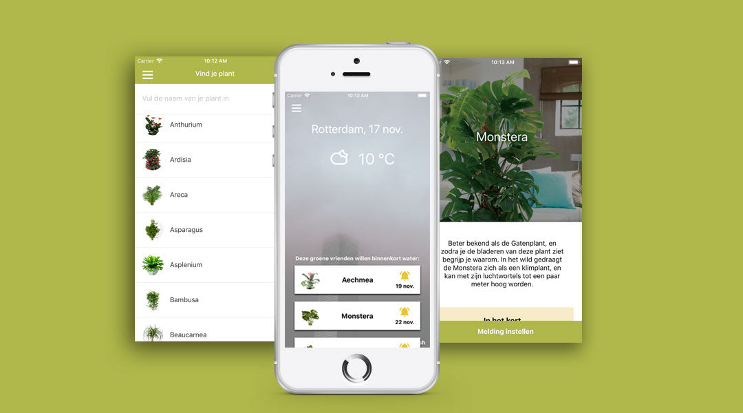 De Plantsome app is vernieuwd!