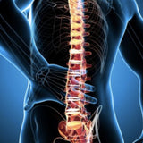 Massage Therapy for Sciatica?