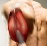 Trigger Point Therapy - Treating the Triceps