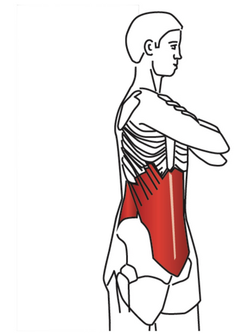 Stretching for Trigger Points
