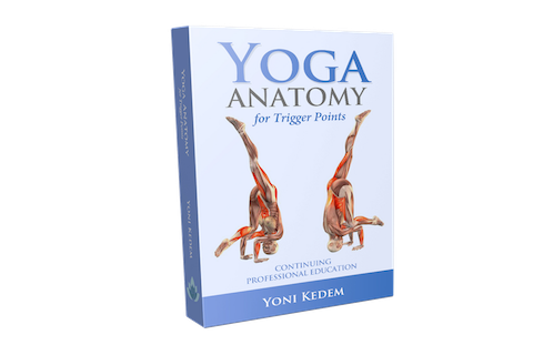 Yoga Anatomy Course