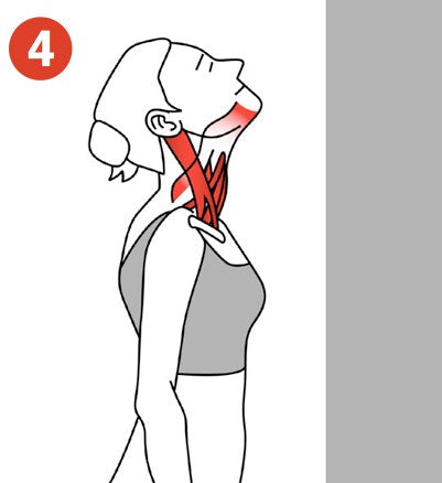 Stretching Trigger Points