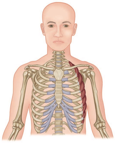 Serratus Anterior Trigger Points