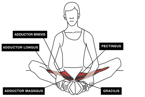 Trigger Point Release Groin Stretch