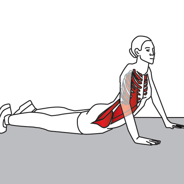 Stretching Psoas Trigger Points